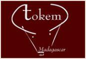 tokem-logo.jpg